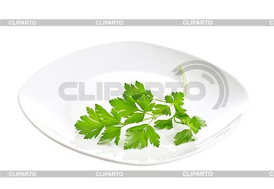 Białej płytce z gałązką pietruszki | Foto stockowe wysokiej rozdzielczości |ID 3107173