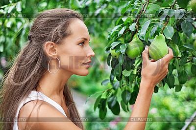 Schöne Frau, Kommissionierung die Birne im Garten | Foto mit hoher Auflösung |ID 3016786