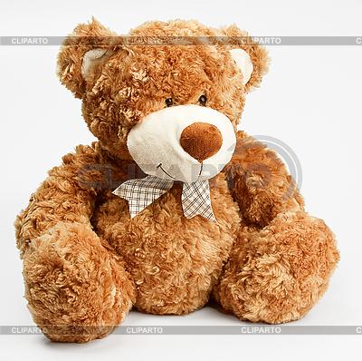Furry teddy bear | Foto stockowe wysokiej rozdzielczości |ID 3016890