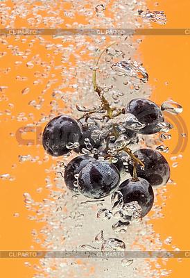 Weintraube fällt in Wasser | Foto mit hoher Auflösung |ID 3017041