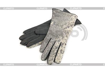 Graue weibliche Lederhandschuhe | Foto mit hoher Auflösung |ID 3019640