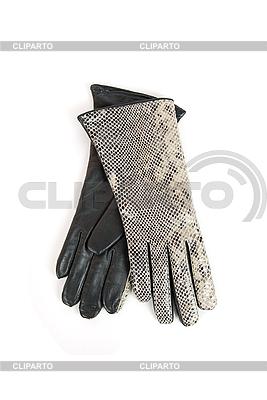 Graue weibliche Lederhandschuhe | Foto mit hoher Auflösung |ID 3019704