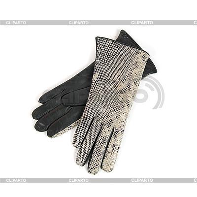Graue weibliche Lederhandschuhe | Foto mit hoher Auflösung |ID 3027349
