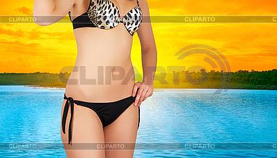Bikini | Foto mit hoher Auflösung |ID 3027519