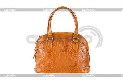 Braune Frauentasche | Foto mit hoher Auflösung |ID 3028507