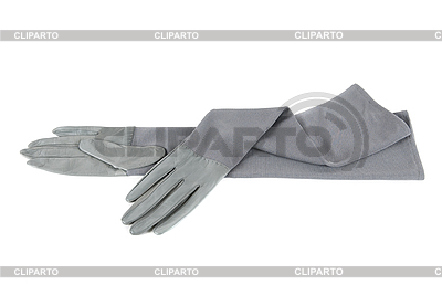 Graue weibliche Lederhandschuhe | Foto mit hoher Auflösung |ID 3028521