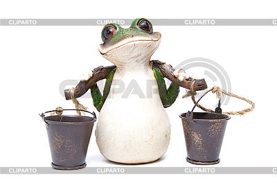 Żaba z pojemnikami | Foto stockowe wysokiej rozdzielczości |ID 3029465