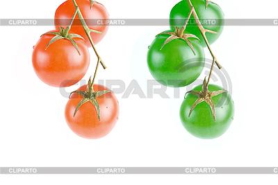 Rote und grüne Tomaten | Foto mit hoher Auflösung |ID 3029557