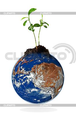 Planet Erde mit Pflanze | Foto mit hoher Auflösung |ID 3029814