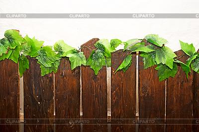 Drewniany płot | Foto stockowe wysokiej rozdzielczości |ID 3030384