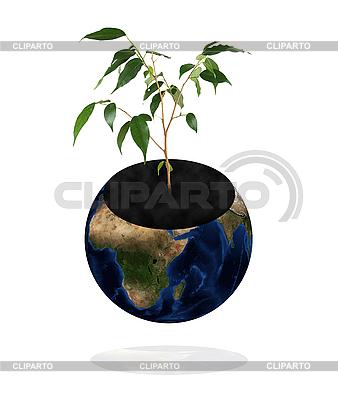 Planet Erde mit Pflanze | Foto mit hoher Auflösung |ID 3030540