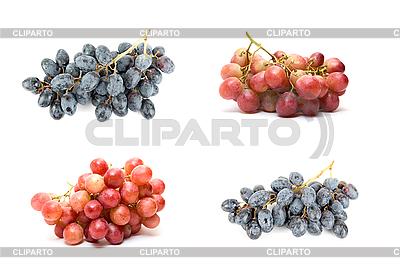 Zbiór winogron | Foto stockowe wysokiej rozdzielczości |ID 3030578
