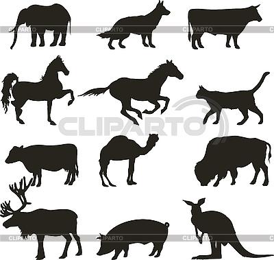 Silhouetten von Tieren | Stock Vektorgrafik |ID 3034751