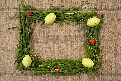 Trawa ramki z jaj i lady-dów | Foto stockowe wysokiej rozdzielczości |ID 3020502