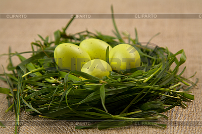 Gras-Nest mit Eiern | Foto mit hoher Auflösung |ID 3022573