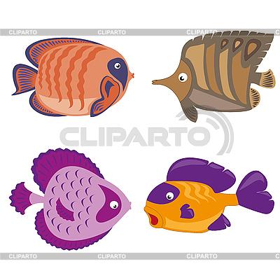 Tropische Fische | Stock Vektorgrafik |ID 3064301