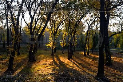Sonniger Herbstmorgen | Foto mit hoher Auflösung |ID 3039773