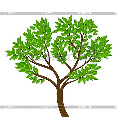 树 | 向量插图 |ID 3051183