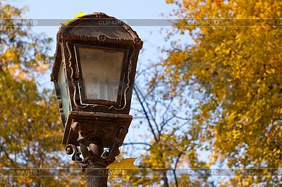 Latarnia w parku jesienią | Foto stockowe wysokiej rozdzielczości |ID 3080219