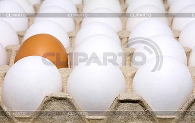 Weiße Eier und ein braunes Ei | Foto mit hoher Auflösung |ID 3040814