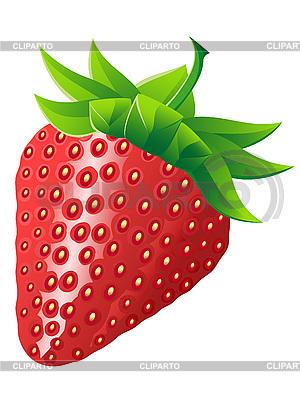 Reife Erdbeere | Stock Vektorgrafik |ID 3044171
