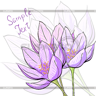 꽃 카드 | 벡터 클립 아트 |ID 3045743
