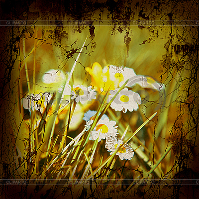 Retro Natur-Hintergrund | Foto mit hoher Auflösung |ID 3054273