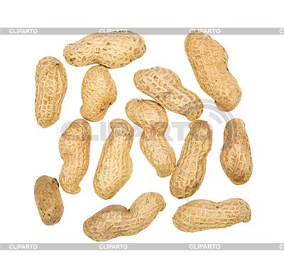 Erdnüsse | Foto mit hoher Auflösung |ID 3056494