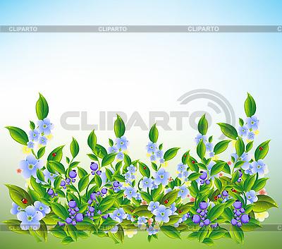 Sommerwiese mit blauen Blumen | Stock Vektorgrafik |ID 3047619