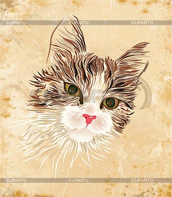 Rocznika portret kota | Klipart wektorowy |ID 3050285