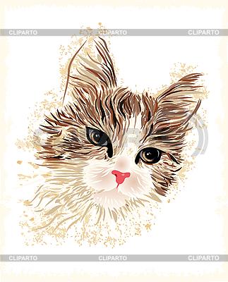 Rocznika portret kota | Klipart wektorowy |ID 3050300
