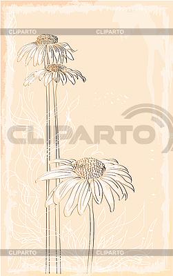 거베라 빈티지 스타일의 꽃다발 | 벡터 클립 아트 |ID 3051423