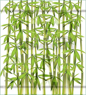 Bambusowa konstrukcja | Klipart wektorowy |ID 3062057