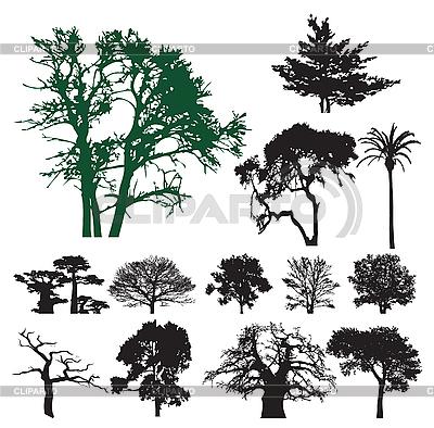 Drzewo sylwetki | Klipart wektorowy |ID 3116487