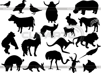 Zwierzęta czarne sylwetki | Klipart wektorowy |ID 3222593