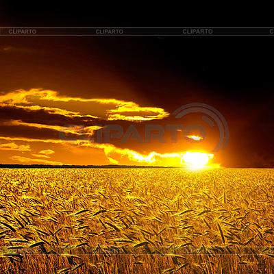 Landschaft im ländlichen Raum | Foto mit hoher Auflösung |ID 3049367