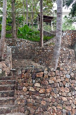 Steintreppe im Dschungel | Foto mit hoher Auflösung |ID 3337279