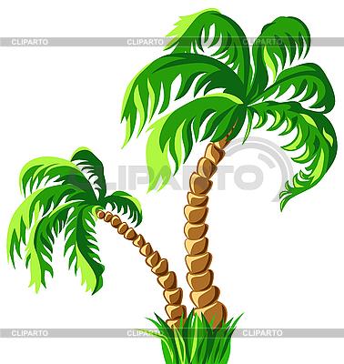 Zwei Palmen | Stock Vektorgrafik |ID 3066734
