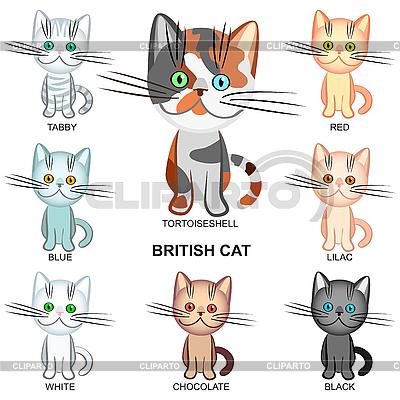 Set Kurzhaar Katzen von verschiedenen Farben | Stock Vektorgrafik |ID 3070562