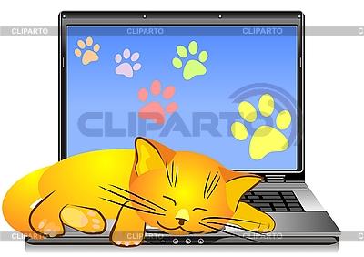 Katze schläft auf der Tastatur des Laptops | Stock Vektorgrafik |ID 3070640