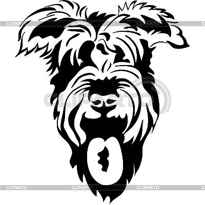 Rasowy sznaucer psy | Klipart wektorowy |ID 3101714