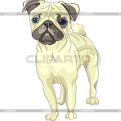 스케치 강아지 새끼 사슴 퍼그 번식 | 벡터 클립 아트 |ID 3126442