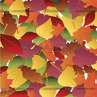 Hintergrund von herbstlichen Blättern | Stock Vektorgrafik |ID 3054080