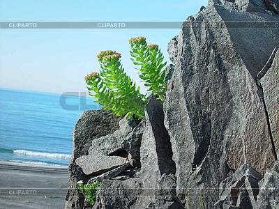 Kurilen-Inseln | Foto mit hoher Auflösung |ID 3054509