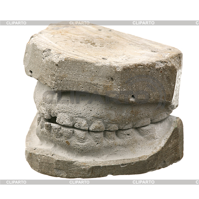 Mandible stock photos and vektor eps clipart cliparto for Red top gypsum plaster