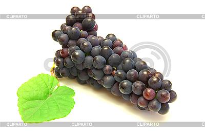 Czarny winogron z zielonym liściem | Foto stockowe wysokiej rozdzielczości |ID 3068712