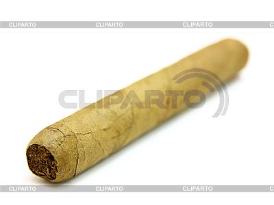 Kubanische Zigarre | Foto mit hoher Auflösung |ID 3101986