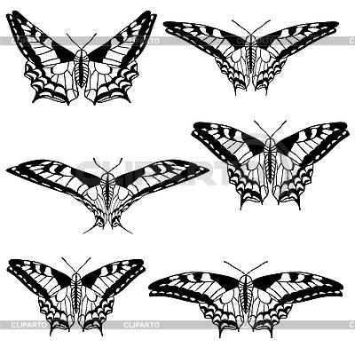 Set von schönen Schmetterlingen | Stock Vektorgrafik |ID 3106557