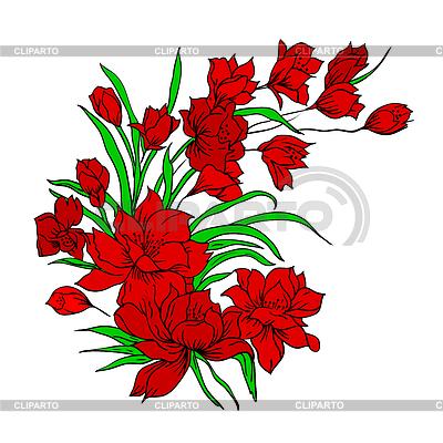 Bukiet kwiatów, malowane ręcznie. | Klipart wektorowy |ID 3250438