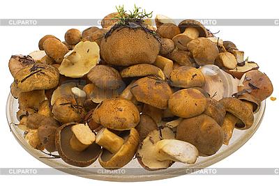 Pilze auf dem Teller | Foto mit hoher Auflösung |ID 3080425